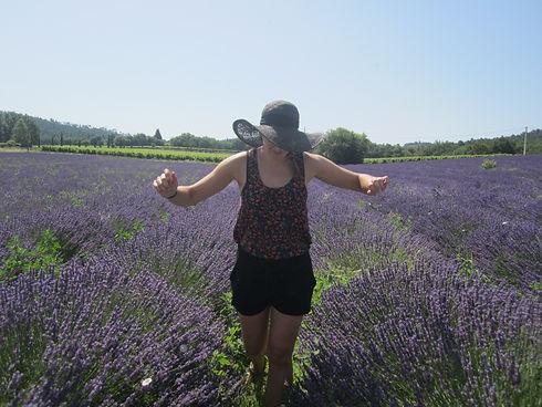 Corrine van Vliet lavender fields in France
