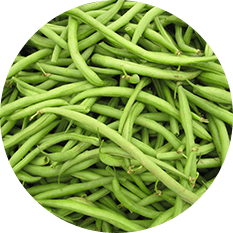 Green Beans Whole Extra Fine