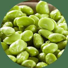 Edamame Beans (shelled)