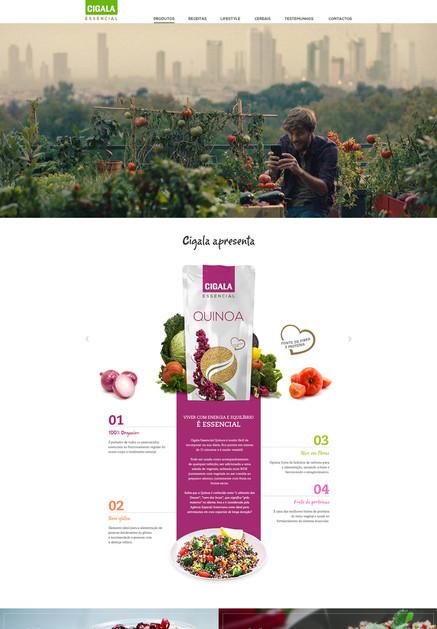 essencial-website.jpg