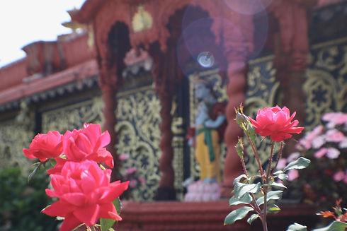 Palace 38.jpg
