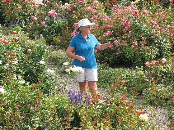 NV Rose Garden 3.jpg