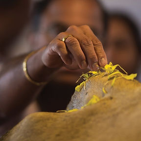 Dharma-Rakshak Seva.jpg