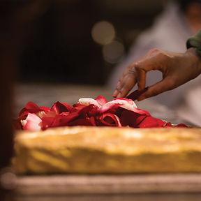 Dharma Seva.jpg