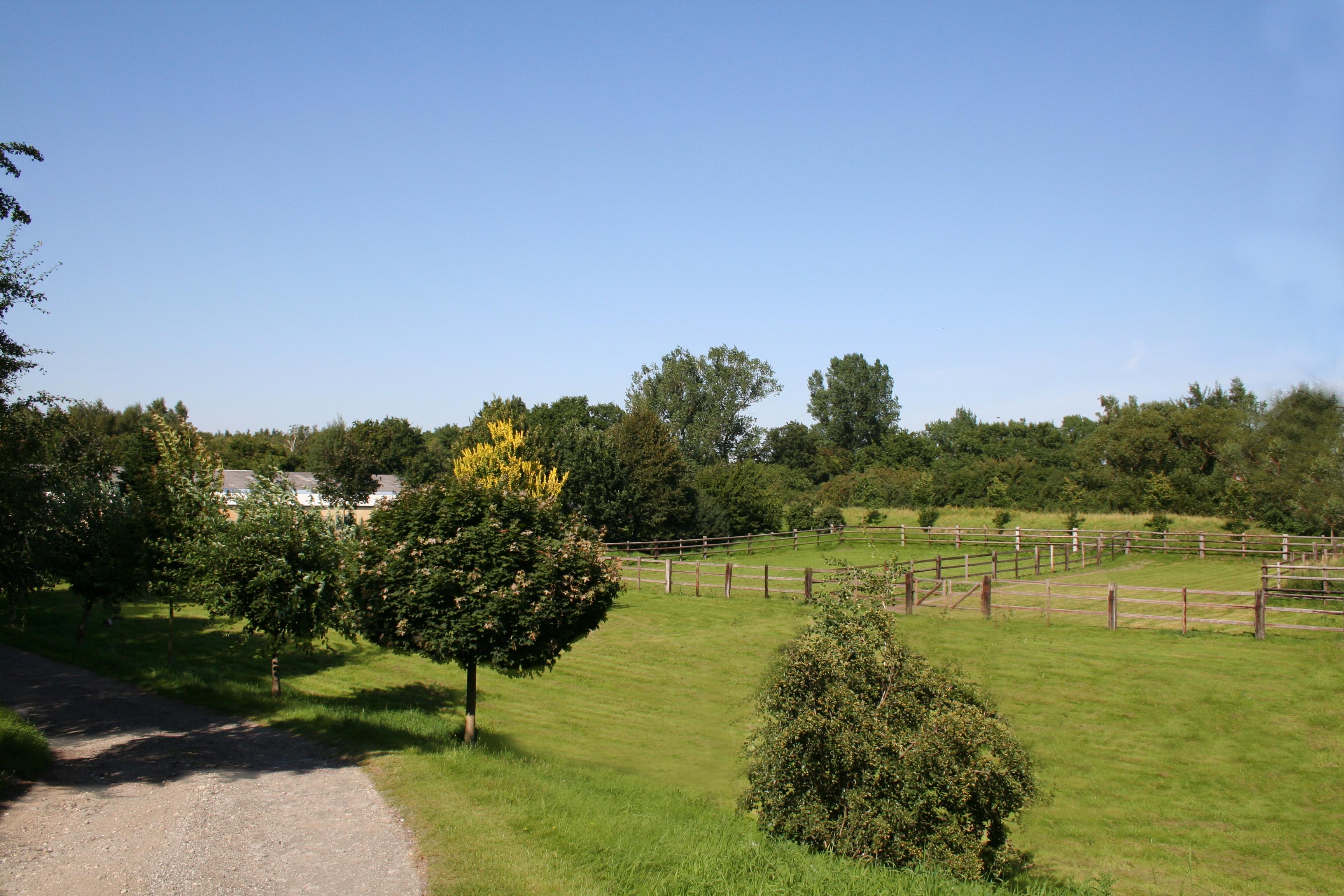 Ansicht Anfahrt - Paddock