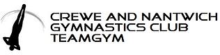 TeamGym logo.png
