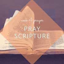 Pray Scripture.png