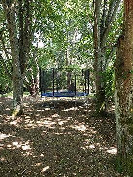 trampoline2.jpg