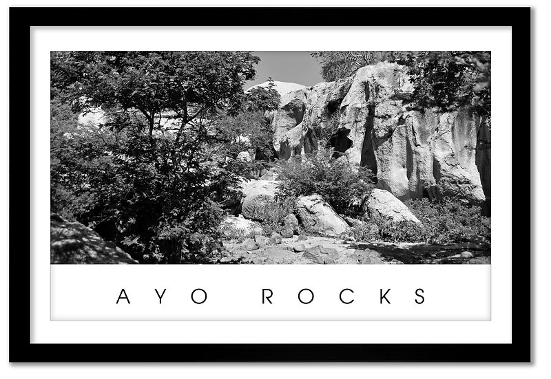 AYO ROCKS