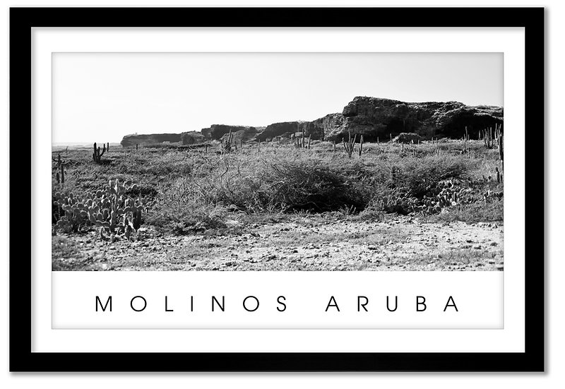 MOLINOS ARUBA
