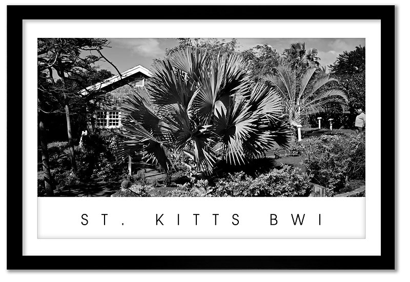 ST. KITTS BWI