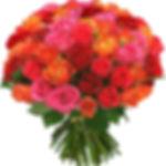Качественные и свежие розы