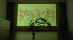 Red Windy Bamboo Grove 붉은 바람부는 대나무숲