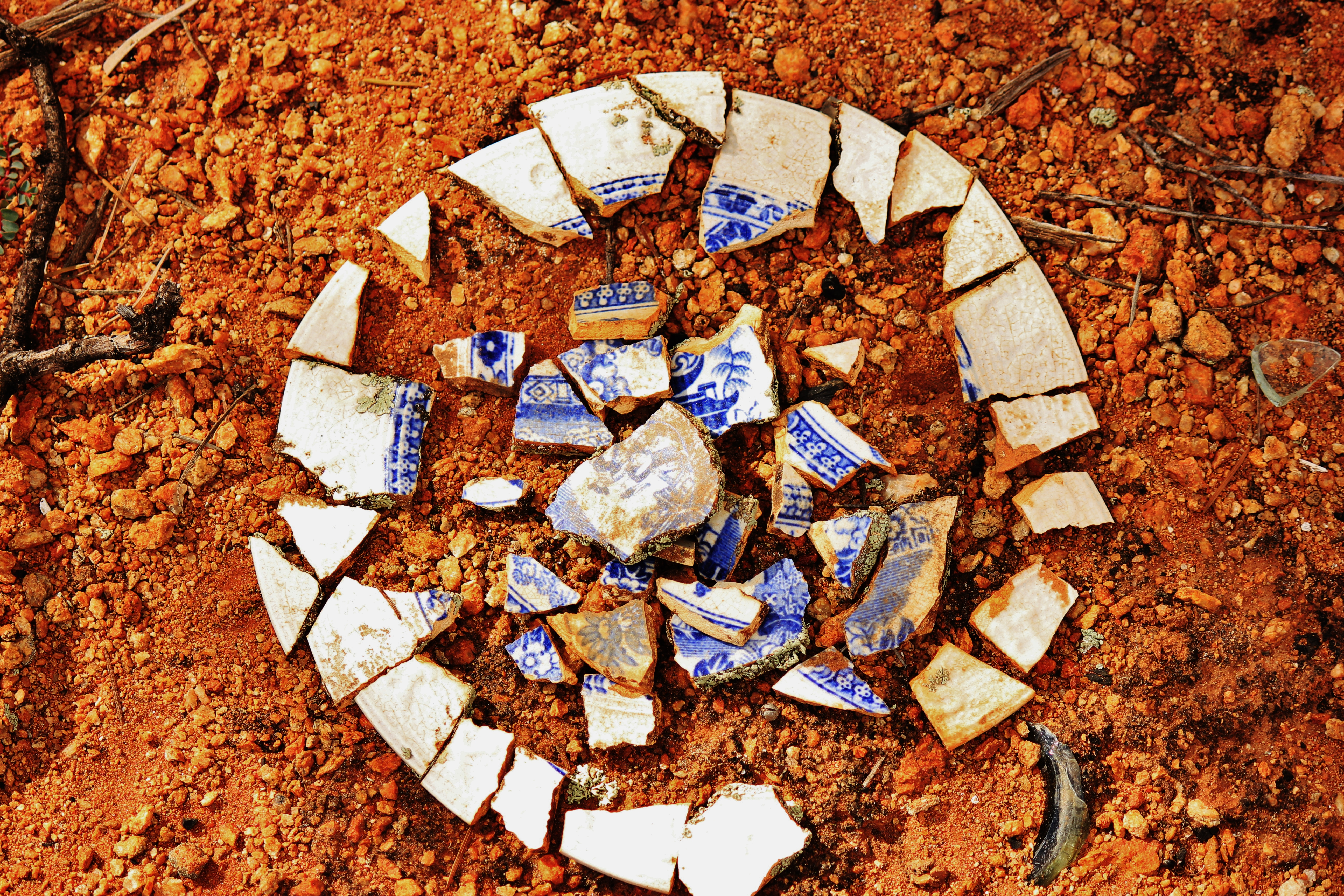 Remains of a discarded childs plate