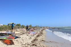 Wind surfers galore