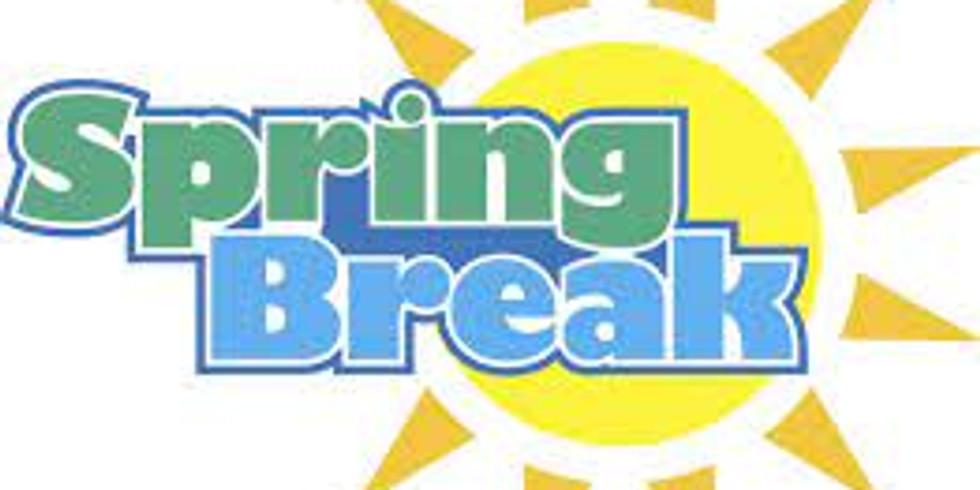 Spring Break Kiwi Camp