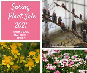 Spring Plant Sale.jpg