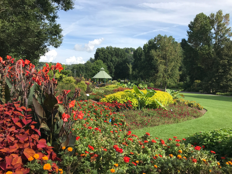 Color Garden sponsored by Ball Flora.jpeg