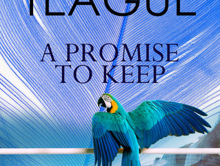 A Promise to Keep  Review