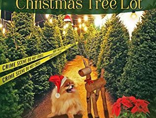 Murder in the Christmas Tree Lot(Tory Benning Mystery #2)  Review