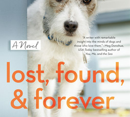 Lost, Found, and Forever Review