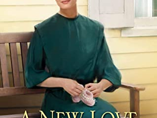 A New Love for Charlotte(Wells Landing #11)  Review