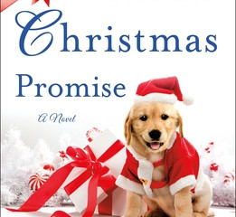 A Heartfelt Christmas Promise  Review