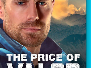 The Price of Valor (Global Search and Rescue, #3)  Review