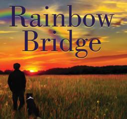 Rainbow Bridge   Review