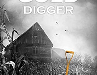 The Gold Digger(True Colors) Series a Review