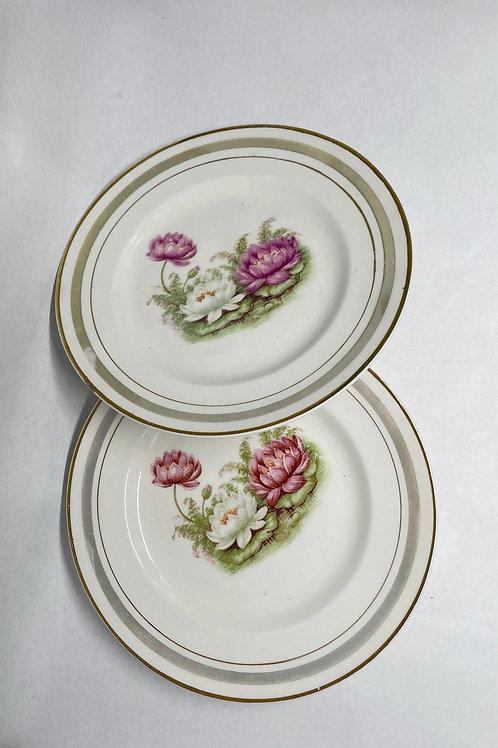 Set of 2 Vintage Porcelain Plates