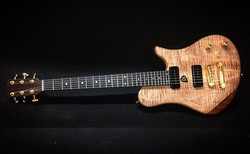 T Gallucci Lutherie
