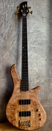 Gallucci bass lily.jpg
