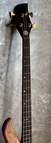 Gallucci lutherie basse lily.jpg