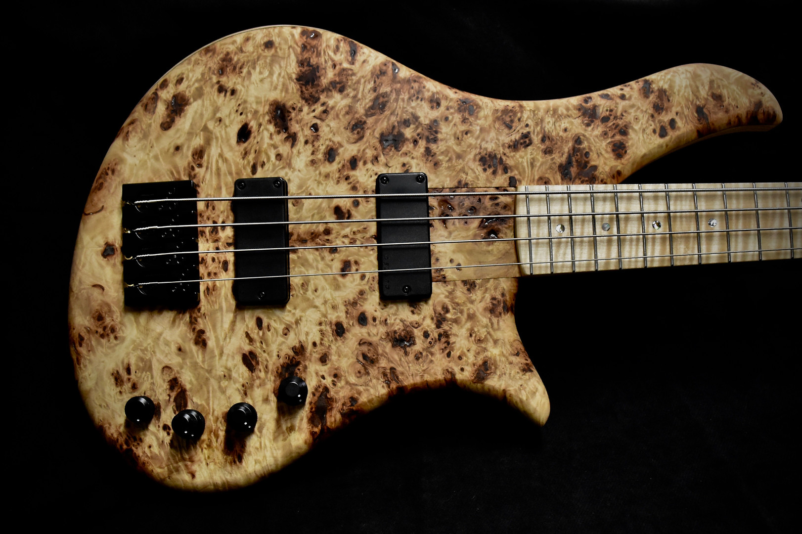 Gallucci Bass Lily