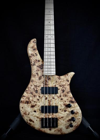 Gallucci Bass Lily