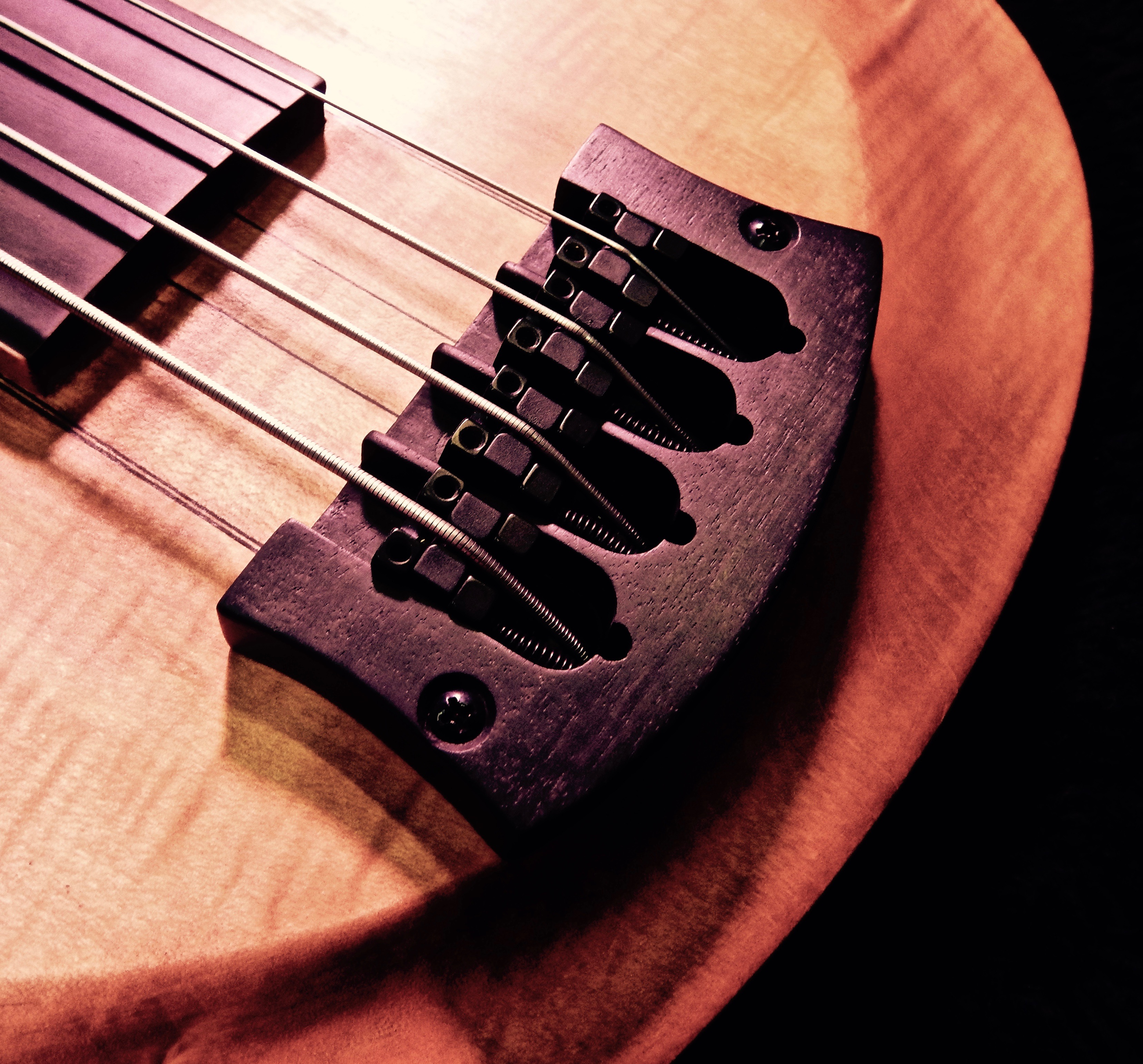 T-Basse Fretless Gallucci Lutherie