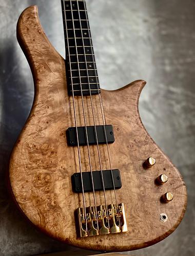Gallucci Tifaine bass lily.jpg