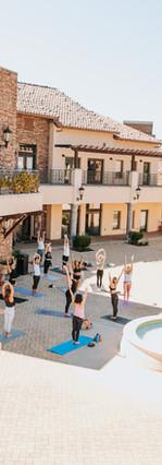 Fitness Entrepreneurs - sq.fit