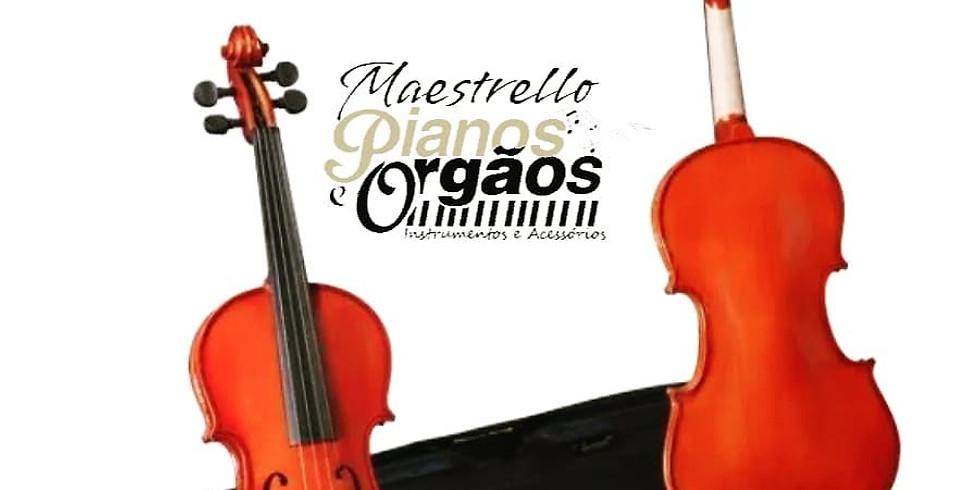 Curso On-Line Violinos