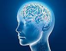 Come sfruttare le capacità cerebrali