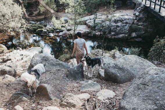Estefanía y Sergio Preboda con huskies en la Sierra de Madrid