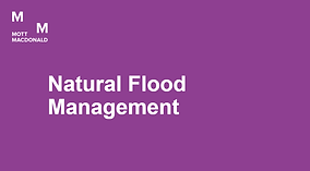Thumbnail forNatural Flood Management.pn