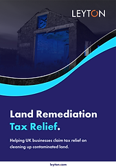 Land-Remediation-Leyton-1.png