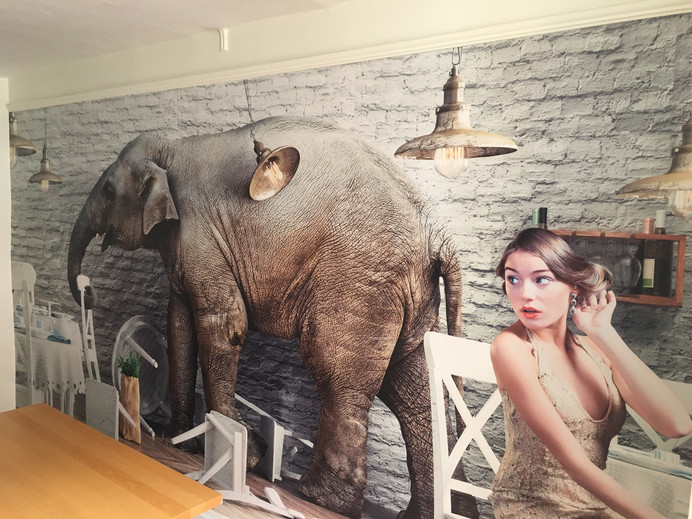Elephant in the room!