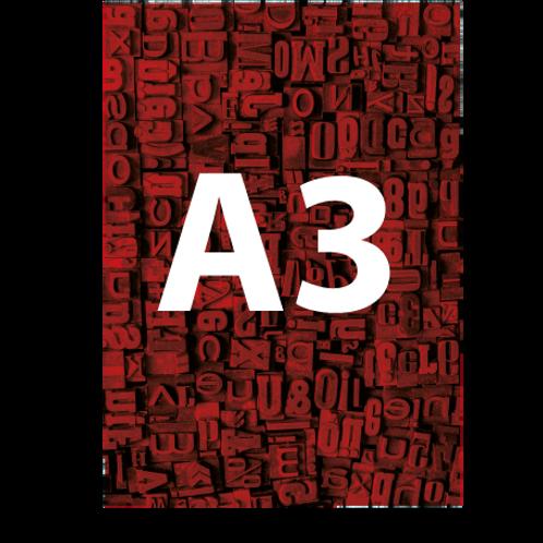 A3 Backlit Poster