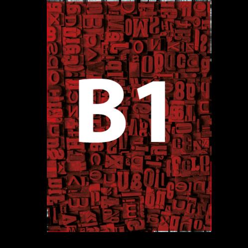 B1 Backlit Poster