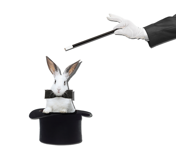 magic with bunny.png