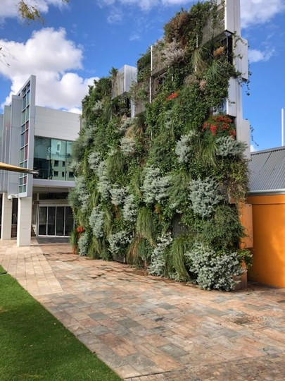 External Green Wall Screen