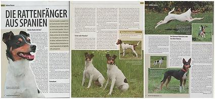 bodeguero_deutsches_hundemagazin.jpg